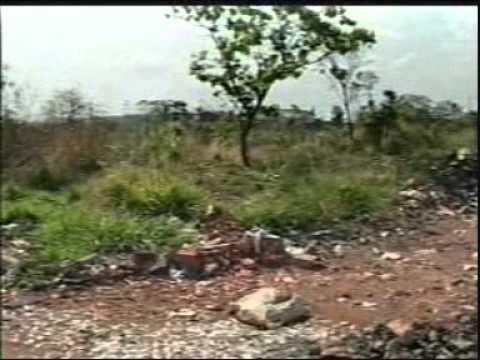 Ruas do Bairro Gaivotas estão sendo usadas como ferro velho e lixão