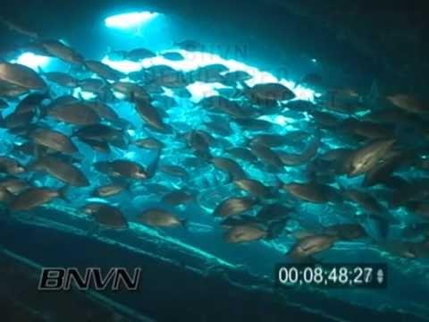 6/13/2004 Wreck Of The Bayronto, Gulf of Mexico Shipwreck