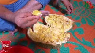 মারাত্মক হাসি ।। সেই রকম কাঁঠাল খোর - How did a boy end up eating whole jackfruit in a short time?