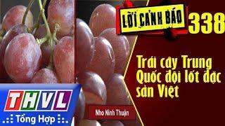THVL | Lời cảnh báo – Kỳ 338: Trái cây Trung Quốc đội lốt đặc sản Việt