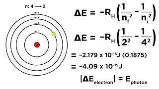 Bohr Model of the Hydrogen Atom