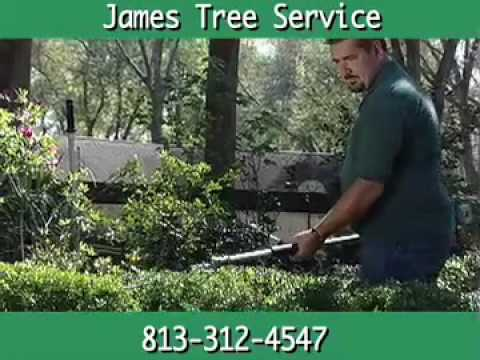 James Tree Service, Zephyrhills, FL