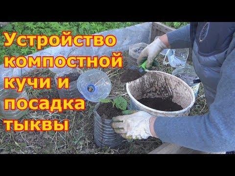 Можно ли сажать в компост 43