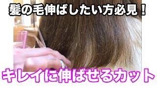 【髪を伸ばしたい方必見】キレイに伸ばせるカット 姫路美容院