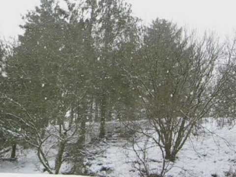 Barenaked Ladies - Green Christmas