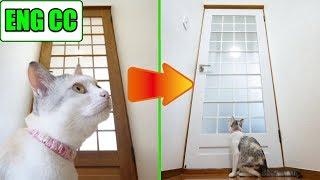 猫部屋の扉、DIYで美しくなる!【Eng CC】