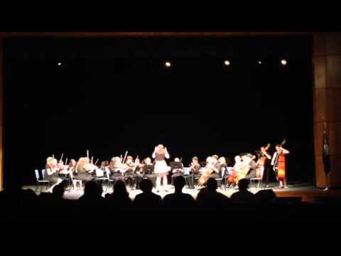 Woodmont High School Orchestra does music from Willy Wonka