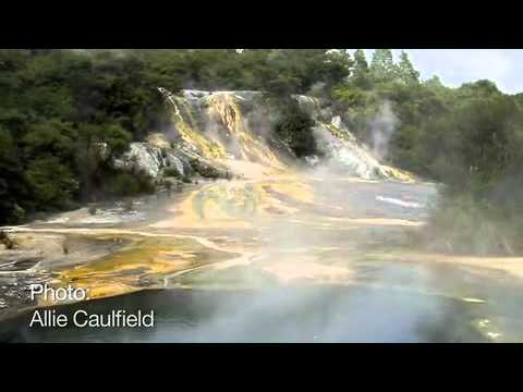 The Coolest Stuff on the Planet- Rotorua: New Zealand's Geothermal Wonderland