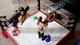 AWESOME WWE action figure set up