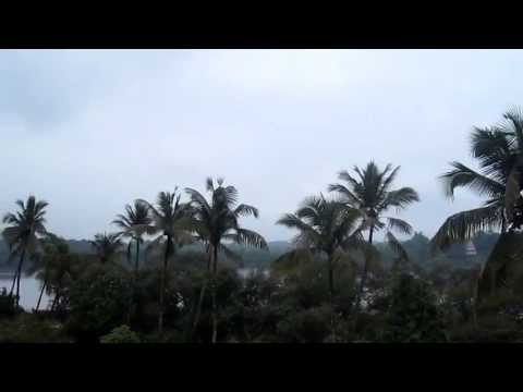 Monsoon Greenery in Goa by Goa Tourism Travels