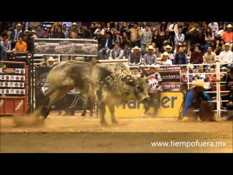 Professional Championship Bullriders Tour World Finale Xi February