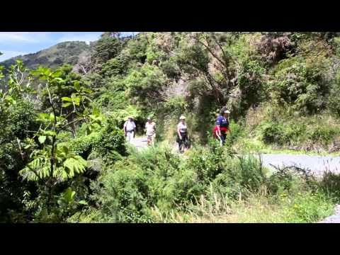 Rimutaka Forest Park- Catchpool Valley and Orongorongo Valley