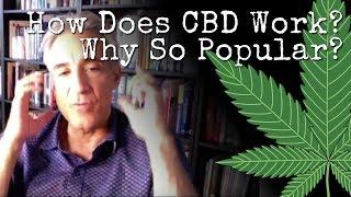 Ben Fuchs: VIDEO: How Do Cannabinoids Work? (CBD Oil)