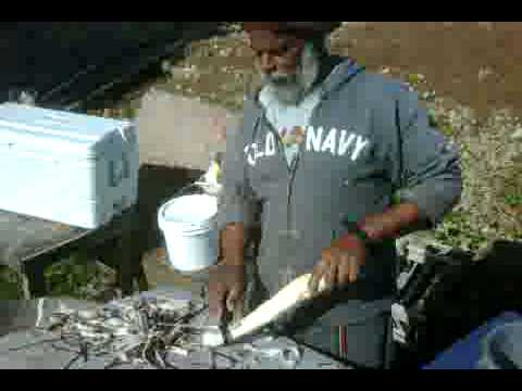 Processing Cassava In Bermuda 2