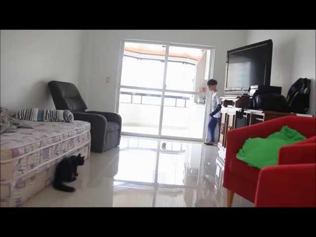 Sid o Gato Goleiro - Sai que é sua TAFFAREL!!!!! - Globo Esporte (goalkeeper cat!)