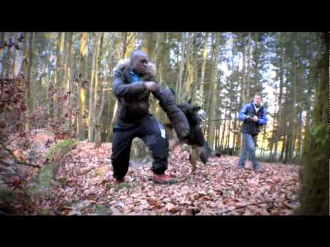The Gadget Show: Top 5 Gadget Animal Moments