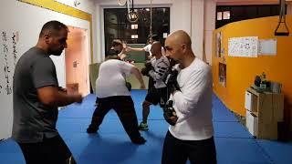 Q&A Shadow Boxing   Leo