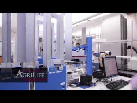 Texas A&M AgriLife: Real World Solutions for Texans