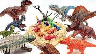 Dinosaur Laying Eggs! Hatching Eggs Transformer Little Dinosaurs!! Dino Toys For Kids!!