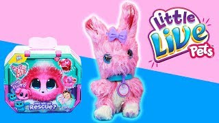 Scruff-a-Luv Bunny! Limited Edition + Bath Time with Moana And Elsa