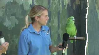 Interview with Groucho
