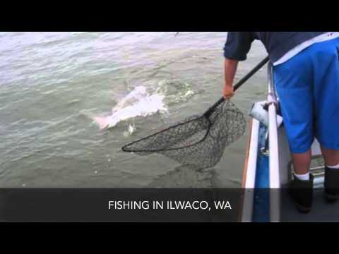 Sea Breeze Charters LLP Fishing Ilwaco WA