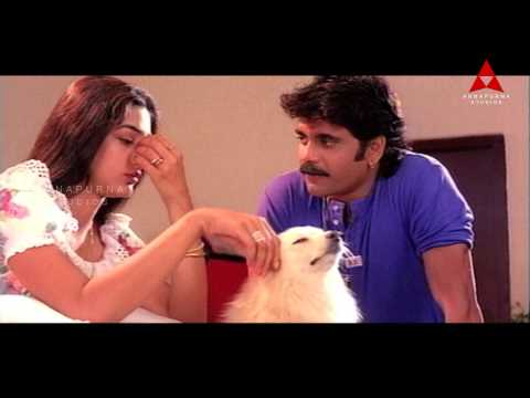 Nagarjuna Seducing Tabu Comedy Scene || Ninne Pelladata Movie || Nagarjuna, Tabu video