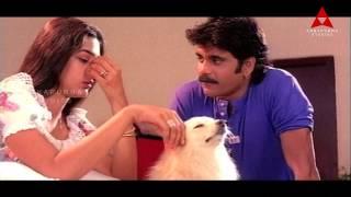 Nagarjuna Seducing Tabu Comedy Scene || Ninne Pelladata Movie || Nagarjuna, Tabu