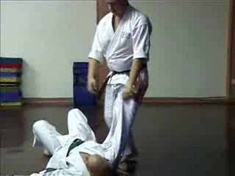 GOJU RYU KARATE - TRAINING TECHNIQUES 2 Image 1