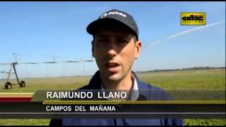 Presentan innovador sistema de riego en San Pedro