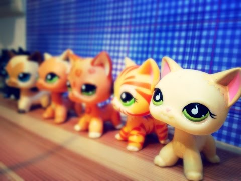 LPS: Все мои кошки на четырех лапах/стоячки