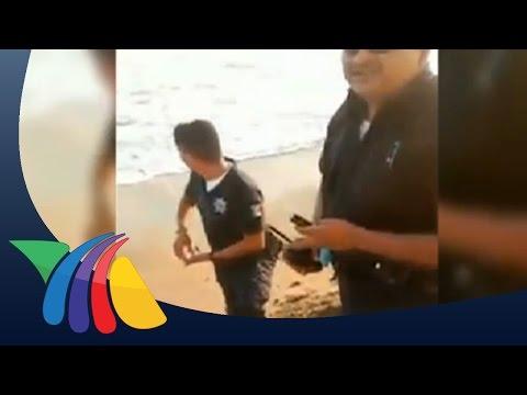 Policías de Manzanillo roban huevos de tortuga | Noticias de Colima