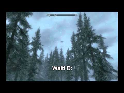 Skyrim Glitch - Amazing Horse video