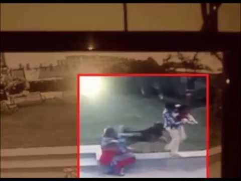(CCTV Footage) Ahmedabad : Boy fights off German shepherd dog to save baby sister
