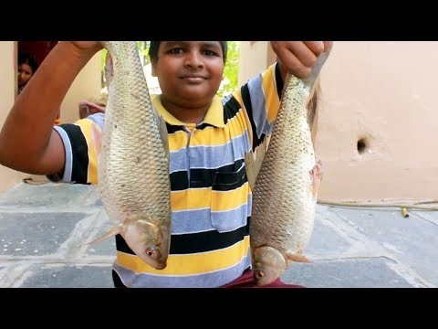 Traditional Masala fish fry Recipe | Boy's Cooking River Fish | Country Boys | indian village food