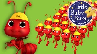 Ants Go Marching | Nursery Rhymes | By LittleBabyBum!
