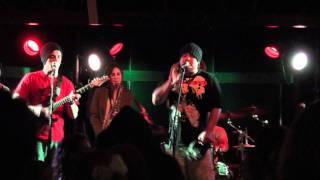 PAUA - Sweet Reggae : Live at The Beach Hotel