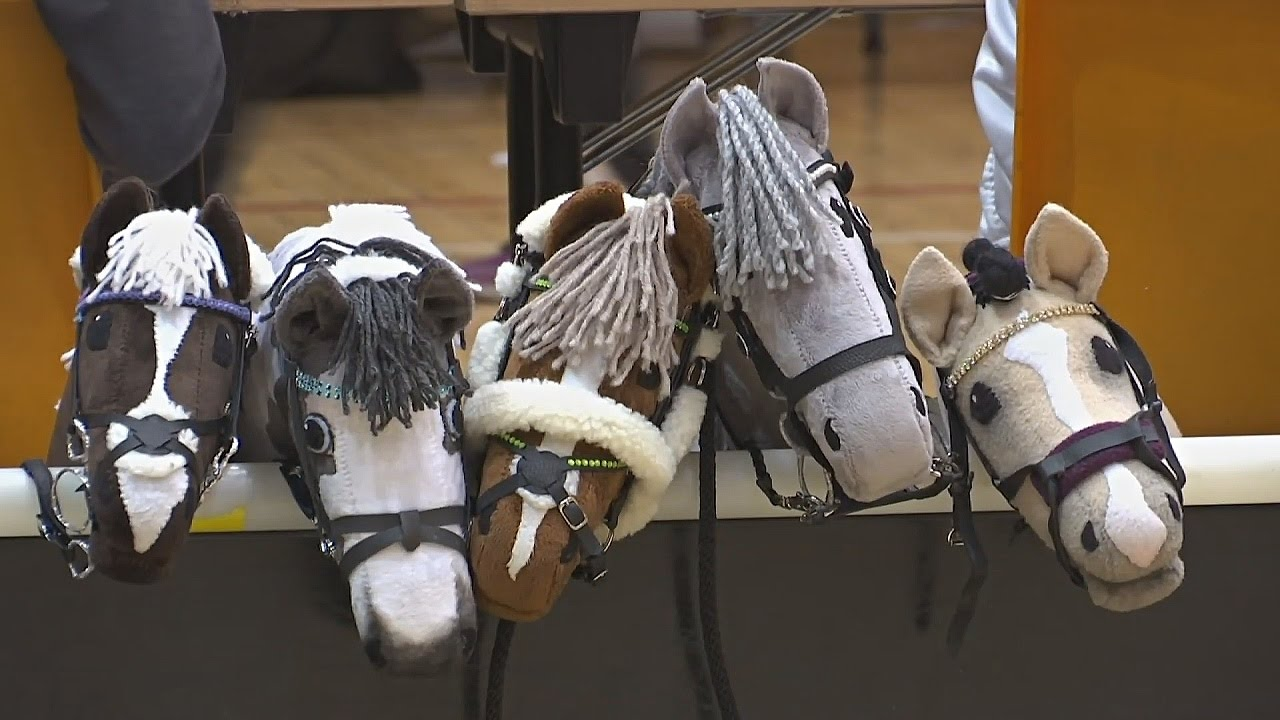 Игрушки для лошадей своими руками 83