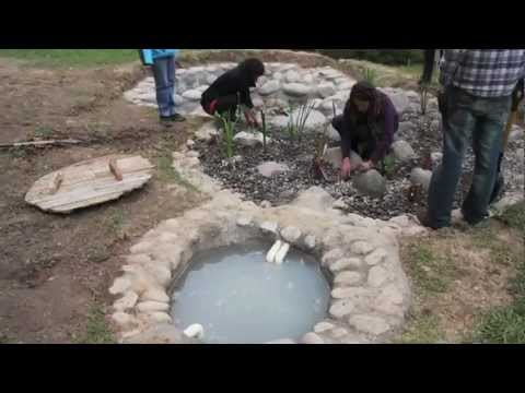 Building A Bio Filter Greywater Recycling System Youtube