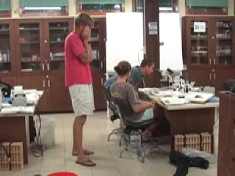 Tropical Field Phycology Workshop, Bocas del Toro Research Station, Panama, July 2008 Video