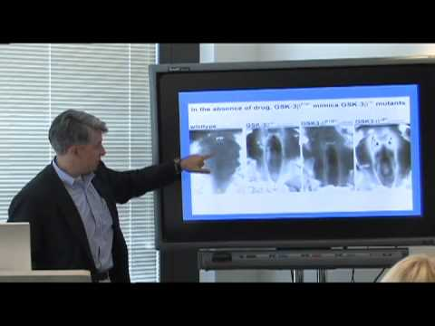 Fat-Derived Stem Cells for Tissue Repair: Michael Longaker - CIRM Science Writer's Seminar