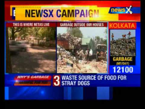 Garbage on streets: NGT notice to Delhi government, EDMC