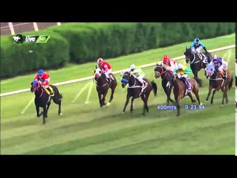 Vidéo de la course PMU PREMIO ZONA SUR