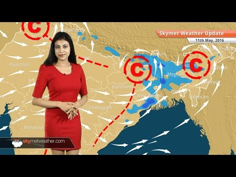 Weather Forecast for May 11: Pre-Monsoon activities likely in entire India barring West