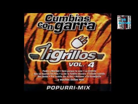 Los Tigrillos - Tus Pompis