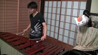 千本桜をプロのマリンバ奏者が本気で演奏してみた! 【マリンバ / Marimba】