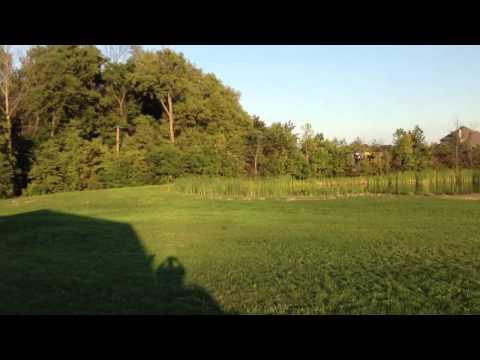 Nick Maxwell flying a Thunder Tiger Mini Titan E325