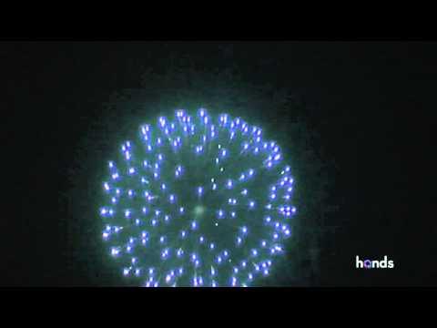 L61246 - SEA BLUE PEONY