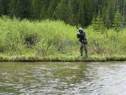 Babblin' Jim's Madison River lost Rainbow Trout!