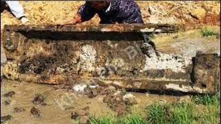 Nghĩa địa mộ thân cây gỗ lim 3.000 năm dưới lòng sông ở Hưng Yên, mở quan tài nhà khảo cổ kinh ngạc